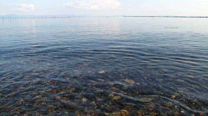 琵琶湖の湖水